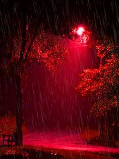 there is nothing like walking in the Rain gif red Beautiful Nature Wallpaper, Beautiful Gif, Beautiful Places, Beautiful Pictures, Rainy Night, Rainy Days, Night Rain, Night Night, Dark Night