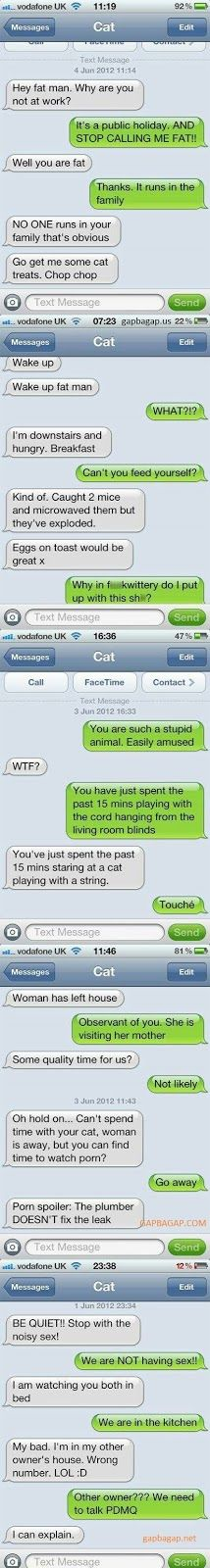 Top 5 Funniest Text Messages ft. Funny Cats