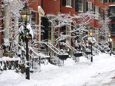 Boston Brownstones - Snow Painted Ladies by TheWorldAsArt