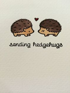 1000+ ideas about Hedgehogs on Pinterest | The Hedgehog, Cute ...