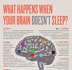 did you know? - Pulling an all-nighter kills your brain cells....