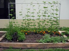 raised garden beds | raised bed construction raised bed construction 1 earth kind uses ...