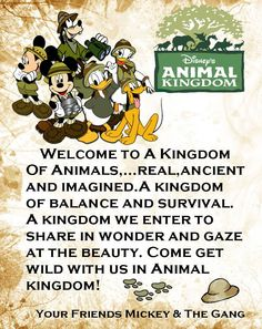 Animal Kingdom Welcome