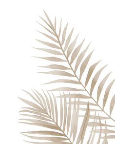 Beige leaves Art Print by Art by ASolo - X-Small Beige Wallpaper, Iphone Background Wallpaper, Aesthetic Iphone Wallpaper, Pattern Wallpaper, Aesthetic Wallpapers, Leaves Wallpaper, Iphone Design, Beige Aesthetic, Leaf Art