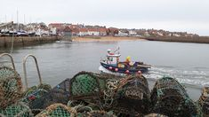 I stayed in Anstruther on the Fife coast in Scotland on a Sunday night in Novembmer. I arrived in Anstruther around to check in at The Waterfront. Cool Places To Visit, The Good Place, Scotland, Coast, Walking, Europe, Blog, Travel, Cards