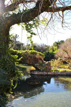 Japanese Tea Gardens in San Antonio, Texas