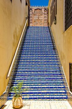 Tiled Steps in Fez, Morocco. Perhaps this stairway leads to Heaven...