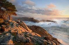 Image of Headland Cove, Point Lobos, Carmel, California from the landscape & rural photos of Maria. Carmel California, California Coast, Central California, Point Lobos State Reserve, Dream Vacation Spots, Carmel By The Sea, Sunset Sea, Desktop Pictures, Landscape Wallpaper