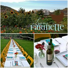 FARM-TO-TABLE DINNER AT THE LYONS FARMETTE - If you have not been to one of the wildly popular and recherche' farm-to-table dinners offered in the Boulder area, it is definitely worth the splurge. REpin if farm fresh food sounds good to you!  http://www.boulderhomesource.com/blog/farm-to-table-dinner-at-the-lyons-farmette.html #Boulder #Colorado #Farm-to-table #Lyons