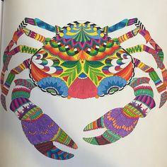 ...még mindig...  #színezés #színezzünkegyütt #színezőfelnőtteknek #colouring #colouringbook #colouringbookforadults #crab #colourful #milliemarotta #tropicalwonderland #tropicalwonderlandcolouringbook #nofilter #mik #ikozosseg #iközösség