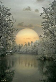 Ideas winter landscape photos earth for 2019 Beautiful Moon, Beautiful World, Beautiful Images, Beautiful Winter Pictures, Foto Picture, Winter Scenery, Snow Scenes, Jolie Photo, Winter Landscape