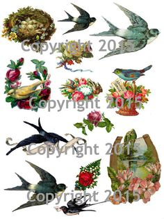 Printable Victorian Birds and Flowers 101 Collage Sheet. by joapan