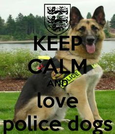 KEEP CALM AND love police dogs - KEEP CALM AND CARRY ON Image Generator - brought to you by the Ministry of Information