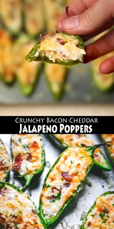 Crunchy Bacon Cheddar Jalapeno Poppers is by far the Best Jalapeno Poppers Recipe on Internet. Lunch Recipes, Easy Dinner Recipes, Mexican Food Recipes, Vegetarian Recipes, Cooking Recipes, Bacon Recipes, Milk Recipes, Cooking Tips, Vegetarian Food