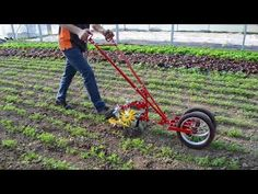 Terrateck wheel hoe is really good to make precision weed control work. Equipt with finger weeder, this is the best way to remove weeds from the row. Farm Tools, Garden Tools, Used Garden Tractors, Build Compost Bin, Walk Behind Tractor, Home Hydroponics, Agricultural Tools, Farming Technology, Woodworking Ideas Table