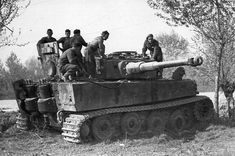Polish tank troopers Normandy 1944 -  examine a captured Tiger tank. The Tiger was the most feared panzer in Normandy and led to an actual term called 'Tiger Phobia'. The Tiger was less prone to mechanical failure as the Panther however its box like shape proved vulnerable to flank shots.