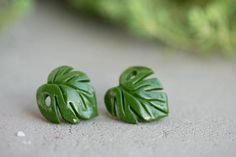Check out Green Monstera leaf studs earrings Tropical Jungle Monstera studs earrings Plants leaf lover Accessory Birthday Wedding Bridal Gifts on eteniren