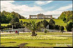 Schloss Schönbrunn - Gloriette - Wien-Spezial #Wien #Vienna #wonderlustvienna #vienna_austria #ViennaNow #Österreich #Austria #ig_austria #feelaustria #visitaustria #schlossschönbrunn #CastleSchönbrunn #schonbrunncastle #schönbrunn #biancabuergerphotography #canon #EOS5DMarkIII #5Diii #gloriette #garden #Garten #shootcamp #pickmotion #Reise #travel