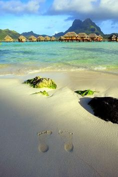 : Bora Bora    See More 2013's Hottest Free Social Dating App. Download from  http://avalable.com/