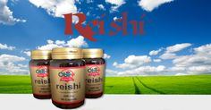 Vuoi un corpo più forte e reattivo? Prova il Funghi Reishi. 100% Estratto Reishi, il più ricco di elementi nutritivi.