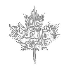 Canadian Maple Leaf Colouring Page with Abstract Drawing in Mind Form by Donald Lee Canadian Tattoo, Canadian Art, Leaf Coloring Page, Coloring Pages, Abstract Drawings, Art Drawings, Maple Leaf Drawing, Native Tattoos, Canadian Maple Leaf