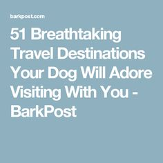51 Breathtaking Travel Destinations Your Dog Will Adore Visiting With You - BarkPost Kayaking With Dogs, Your Dog, Travel Destinations, Adventure, Kayak Dog, Wanderlust, Animals, Animaux, Places To Travel
