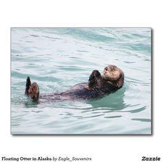 Floating Otter in Alaska Postcard  #otter, #alaska, #floating, #water, #wildlife, #swimming, #sea, #ocean, #mammal, #marine, #animal, #wild, #aquatic, #cute, #furry, #adorable, #nature #postcard