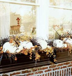 window boxes ready for fall