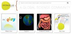 Spongelab, para crear lecciones online sobre ciencia