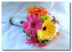 gerber daisy bridesmaid bouquets