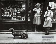Le Chien a Roulettes, c.1977 Print by Robert Doisneau at AllPosters.com