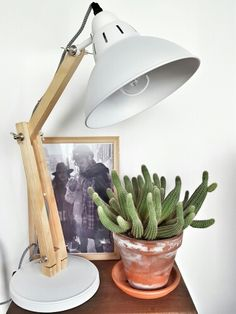 Bright & simple. White & cactus.