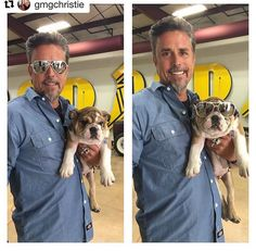 Who wore it better: Hank The Tank (the dog) or Richard? Tank The Dog, Hank The Tank, Cute Funny Animals, Funny Animal Pictures, Richard Rawlings, Fast N Loud, Gas Monkey Garage, Monkey Business, Hair And Beard Styles