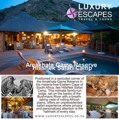 Amakhala Game Reserve Hillsnek Safari Camp. Positioned in a secluded corner of the Amakhala Game Reserve in the malaria-free Eastern Cape of South Africa, lies HillsNek Safari Camp. This intimate family-run lodge, set on the banks of the Bushmans River with a breath-taking vista of rolling African plains, offers an unprecedented safari experience where privacy and personalized attention is the hallmark of every stay. www.luxuryescapes.co.za