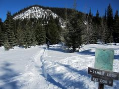 10 spots to snowshoe in Manning Park