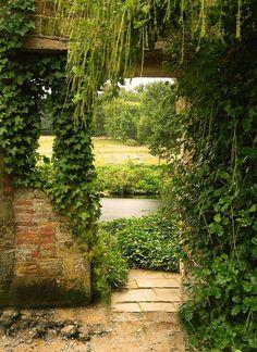 Tuinposter: Doorkijk naar weiland - Teun's Tuinposters