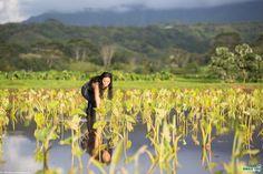 Ho`opulapula Haraguchi Rice Mill