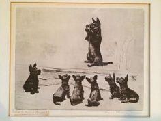 Pencil SIGNED Diana Thorne Lithograph Scottie Dogs Scottish Terrier Rare BONUS