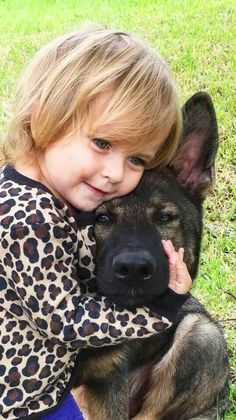 cute awesome german shepherds kid cuddle