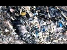 Planet Wissen: Leben ohne Plastik? Eine Familie probiert's aus - YouTube