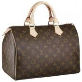 2d482b374c19 LV Louis Vuitton Speedy 30 Brown Top Handles Im in love!