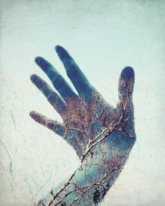 "Hand photograph - whimsical photography - double exposure photography tree sky surreal wall art - blue and gold ""Touch the Sky"":"