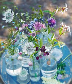 One day, I'd love to have a small garden or patio at a cottage somewhere in Provence and it'd be filled with old mason jars and wine bottles with fresh-picked flowers.