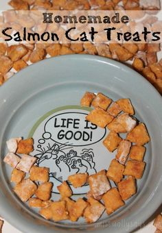 Homemade Salmon Cat Treats Recipe