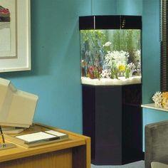 PentaView Triangle Corner 35 Gallon Aquarium with Stand - P-5