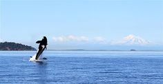 Salt Spring Island, BC