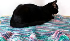 Small to Medium Winged Pet Blanket by jKnitsShop on Etsy. (Sorry, Cat Not Included!) $20.00 CAD, ships worldwide. Wings, Ships, Kids Rugs, Etsy Shop, Cat, Blanket, Medium, Trending Outfits, Handmade Gifts