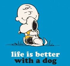 That's right Charlie Brown.  You rock Snoopy!!!!