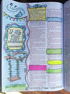 Bible journalling - ye are of more value than many sparrows.