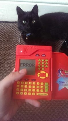 i used to have one of those.  (the pokédex, not the cat. XD)